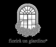 fiorira-un-giardino-logo.png